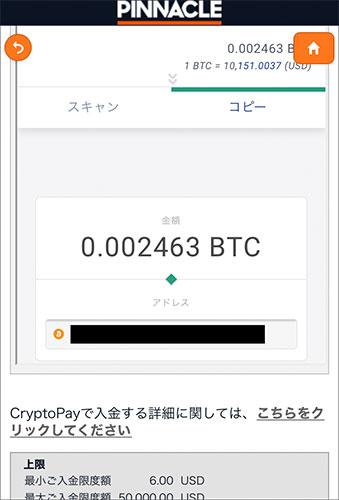 ピナクル ビットコイン入金上限額