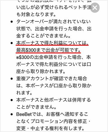 BeeBet入金不要規則2